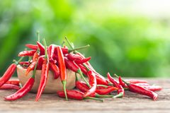 Fresh red hot chilli on wooden table background. royalty free stock photo