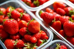 Close up of fresh red ripe strawberries in transparent plastic c stock photography