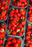 Close up of fresh red ripe strawberries in transparent plastic c stock photo