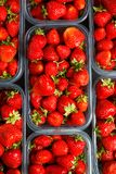 Close up of fresh red ripe strawberries in transparent plastic c stock images