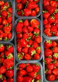 Close up of fresh red ripe strawberries in transparent plastic container boxes. On retail market display, high angle view royalty free stock images