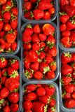 Close up of fresh red ripe strawberries in transparent plastic c royalty free stock photos