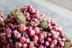 Close-up fresh red shallots. On market place Stock Image