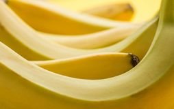 Close up fresh ripe banana, Backgrounds textures. Royalty Free Stock Photo