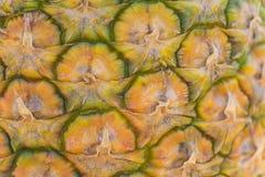 Close up of fresh ripe pineapple bark texture background stock image