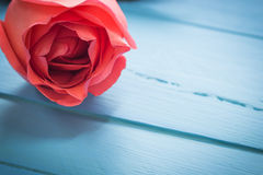 Close up  of fresh roses on blue wood, vintage toning, selective Royalty Free Stock Image
