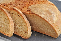 Close-up of fresh rustic bread. royalty free stock photography