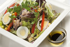 Close-up of fresh salad with tuna and eggs. Close-up of fresh salad with tuna, eggs, vegetables and olive oil dressing Stock Photo