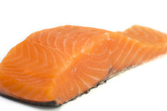 Close up of fresh salmon peace isolated Royalty Free Stock Photo
