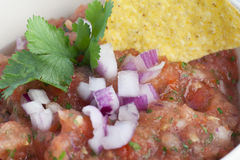 Close Up Fresh Salsa Royalty Free Stock Images