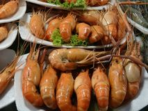 Shrimps at the market. Close up of fresh shrimps at the market royalty free stock image