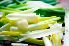 Close up of Fresh Spring Onions Stock Photography