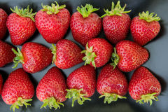 Close up of fresh strawberries on black plate Royalty Free Stock Images