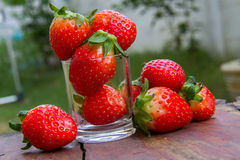 Close up of fresh strawberries on the table and inside grass on Stock Images