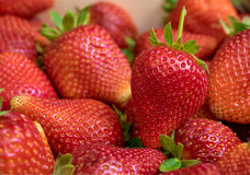 Close up of fresh strawberry Stock Photography