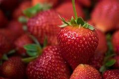 Close up of fresh strawberry.  Royalty Free Stock Photos