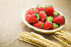 Close up fresh strawberry on basket and sackcloth background Royalty Free Stock Photos