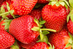 Close up of fresh strawberry Royalty Free Stock Photos