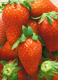 Close up of fresh strawberry - Food frame background Royalty Free Stock Images