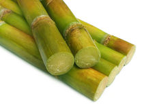 Close up of fresh sugar cane Royalty Free Stock Images