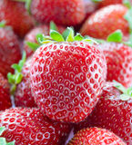 Close up of Fresh Sweet Strawberries Royalty Free Stock Photos