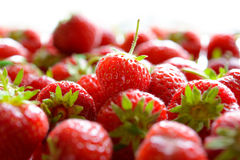 Close up of Fresh Sweet Strawberries Royalty Free Stock Images