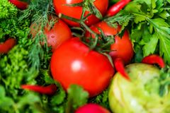 Fresh vegetables and herbs on wooden table. Close up fresh tomatoes, radish, dill, parsley, kohlrabi and ramsons on dark wooden surface Stock Image