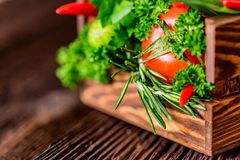 Fresh vegetables and herbs in wooden box. Close up fresh tomatoes, radish, dill, parsley, kohlrabi and ramsons in wooden box on dark wooden surface Royalty Free Stock Images