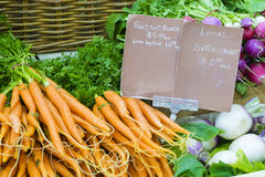 Close-up of fresh vegetables in local farmers market. Close-up of fresh dutch carrot bunches and turnip with price tags in local farmers market Royalty Free Stock Image