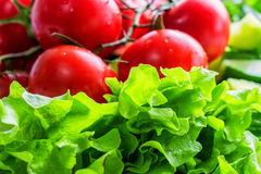 Close up fresh vegetables for salad. Closeup bright fresh tomatoes and sorrel leaves ready for making salad royalty free stock photos
