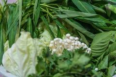 Close up fresh vegetables Stock Photos