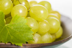 Close up of fresh white grapes on brown plate. Royalty Free Stock Images
