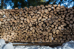 Close up of freshly chopped wood pile in the snow Royalty Free Stock Photo