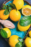 Close-up of freshly picked lemons with leaves in blue plate Stock Images