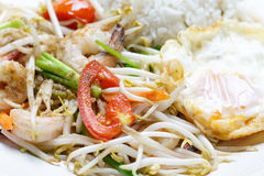 Close up fried beansprout Stock Photography