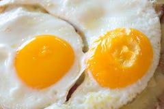 Close up fried egg Stock Photos
