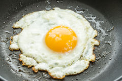 Close up fried egg Stock Images