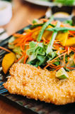 Close up Fried fish with fresh salad. On plate Royalty Free Stock Image