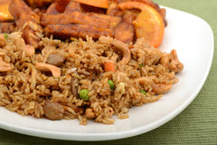 Close up of fried rice on a plate with tofu Royalty Free Stock Photo