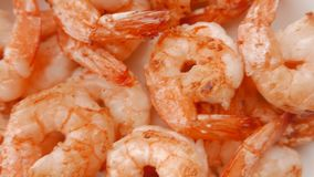 Close up of fried shrimps on a plate. 4K UHD. Close up of fried shrimps on a plate stock video footage