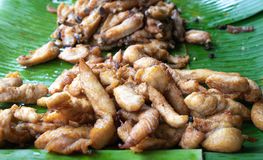 Close up fried sliced pork on green banana leaf, Thai street foo royalty free stock photo