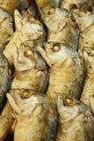 Close up of fried thai mackerel fish. Thai Food Royalty Free Stock Images