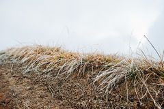 Close up of frost grass on mountain hill road Stock Images