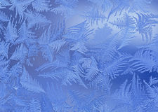 Close up of frost Royalty Free Stock Images