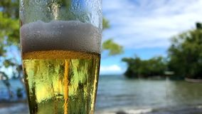 Glass of Beer at Tropical Beach Bar. Close-up of frothy glass of beer at a beach bar with slow-motion waves in the background stock video footage