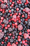 Close up of frozen mixed fruit  - berries Royalty Free Stock Photos