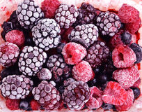 Close up of frozen mixed fruit - berries - red currant, cranberr Stock Photos
