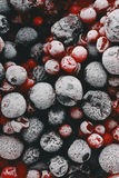 Close up of frozen mixed fruit Stock Photography