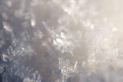 Close-up frozen snowflakes Stock Photos