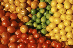 Close Up of Fruit & Tomatoes. Close-up of a bushel of tangerines, limes, lemons and tomatoes Stock Image